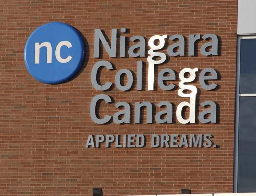 Starting out as a youth and graduate in Niagara